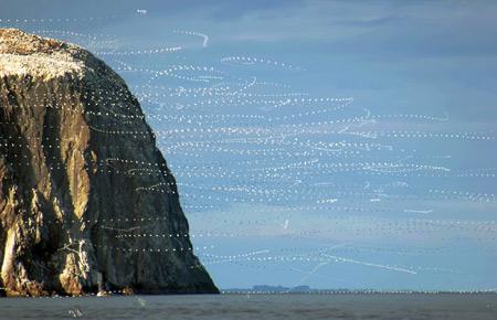 'The Bass Rock from Seacliff >16:14:55-16:15:01< 08/10/04' by Ian Scott